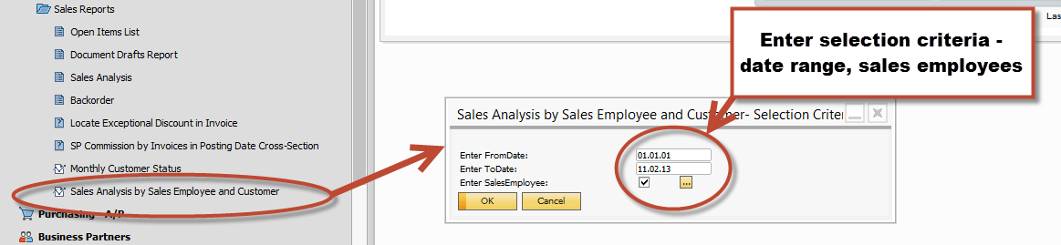 SAP Business One sales analysis report