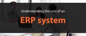 Understanding ERP System cost