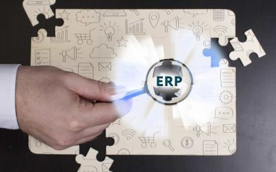 What's the best ERP strategy for subsidiaries of multinational companies?